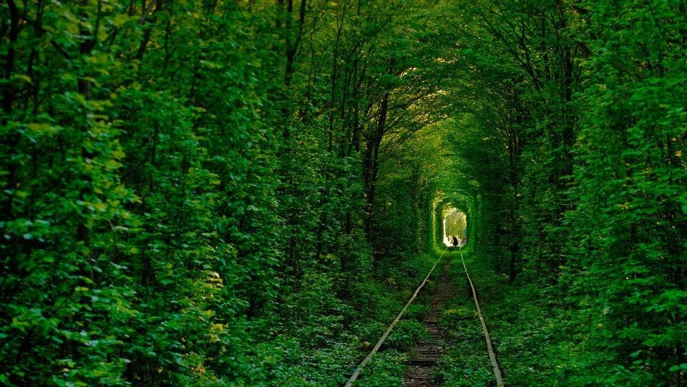 Lugares para ver antes de morir Túnel del Amor en Klevan