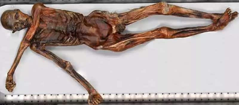 Winter is Coming - Momia de Ötzi